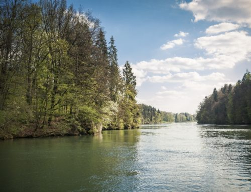 Internationale Vorm-Walde-HZP 2021